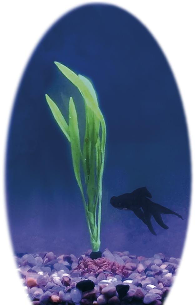 Nobby umělá rostlina bolivijský meč 11,5 x 5 cm
