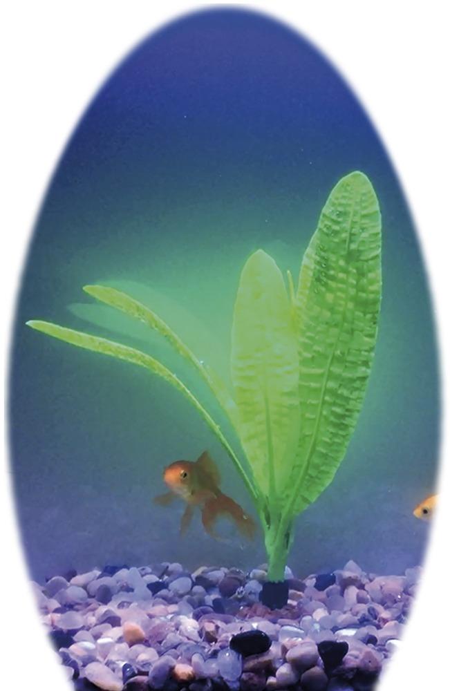 Nobby umělá rostlina kryptokoryna kalatkolistá 11,5 x 11 cm