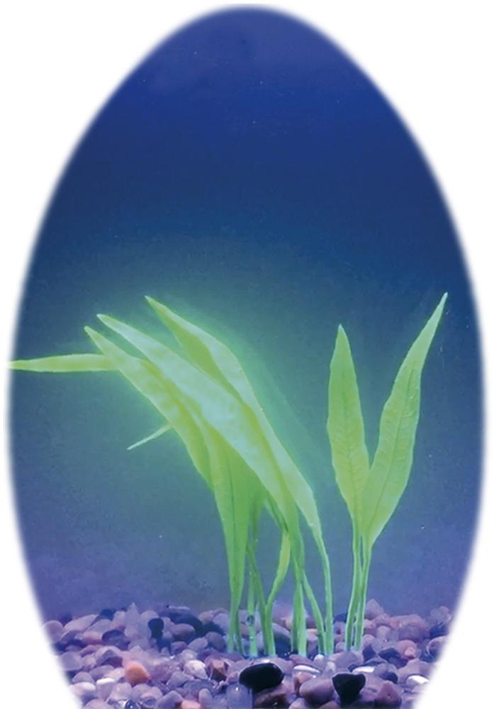 Nobby umělá rostlina Ruffied Sword 25x20cm