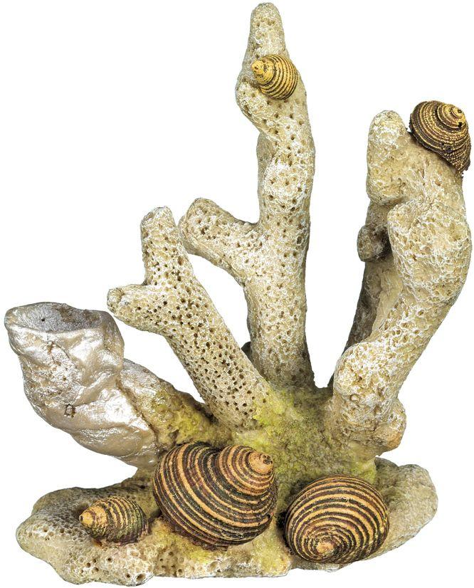 Nobby akvarijní dekorace korál 10 x 6,8 x 11,5 cm