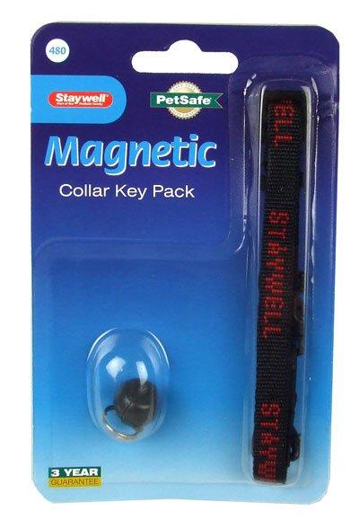 Staywell 480 Original Key náhradní klíč