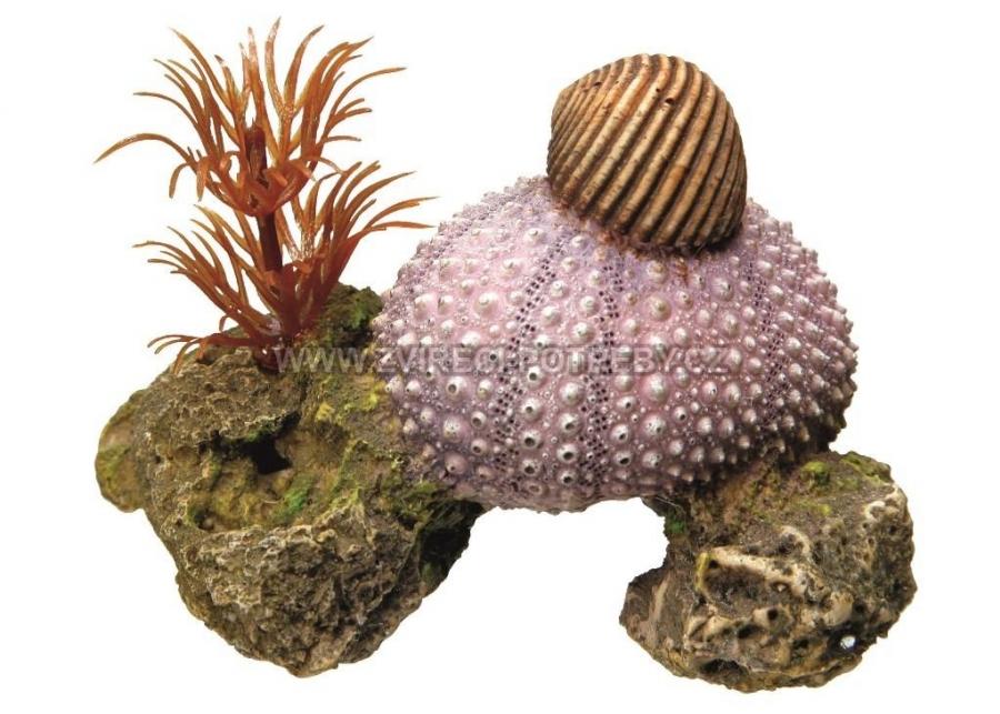 Nobby akvarijní dekorace mušle a rostliny 7,5 x 5 x 5,5 cm