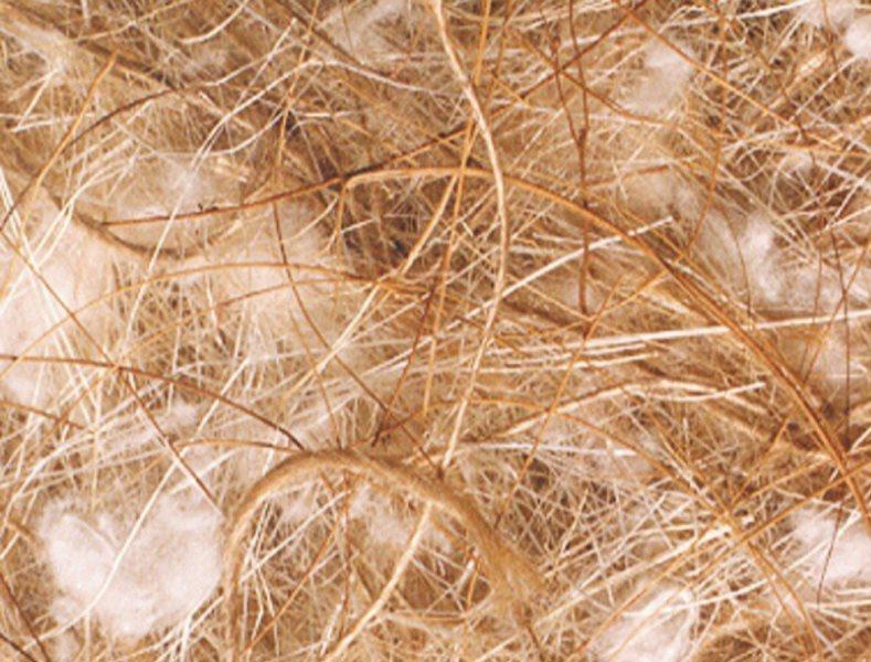 Nobby hnízdní materiál kokos-sisal-juta-bavlna 500g