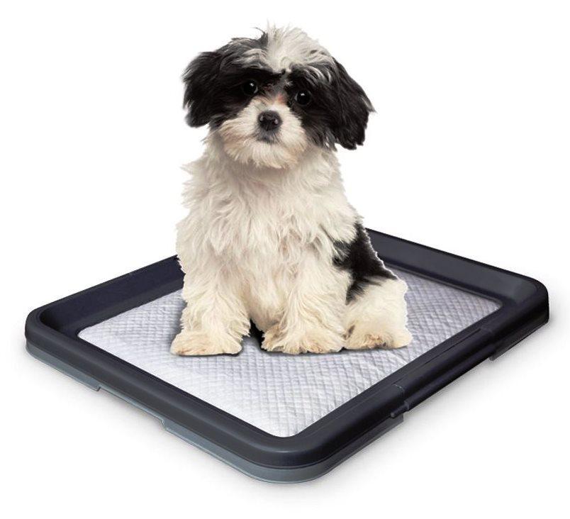 Nobby Doggy Trainer S plastové WC na podložky pro štěňata 48 x 41 x 3,5 cm