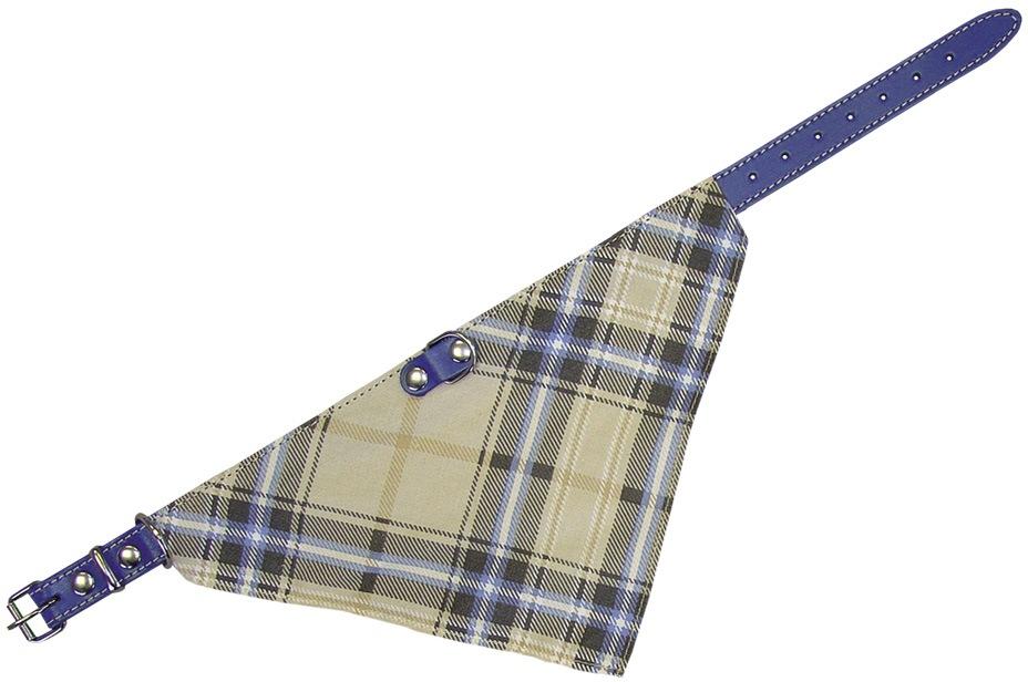 Nobby kožený obojek se šátkem 35cm modrá