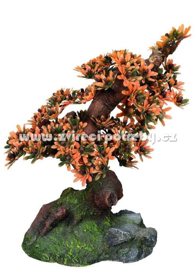 Nobby akvarijní dekorace bonsaj 10,5 x 16 x 19 cm